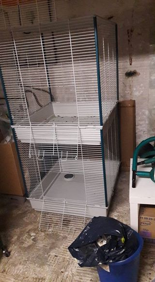 VENDS CAGE FURET TOWER 16174910