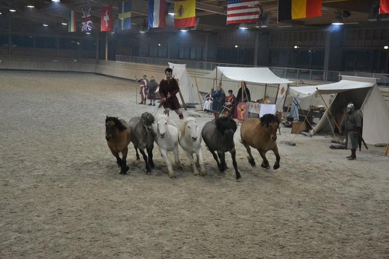 Deauville Mars 2016 Pole international du cheval 12593712