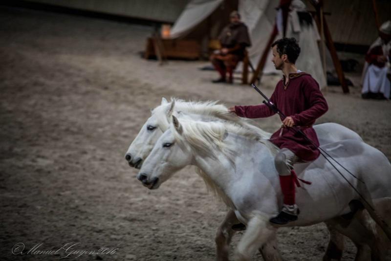 Deauville Mars 2016 Pole international du cheval 12719211