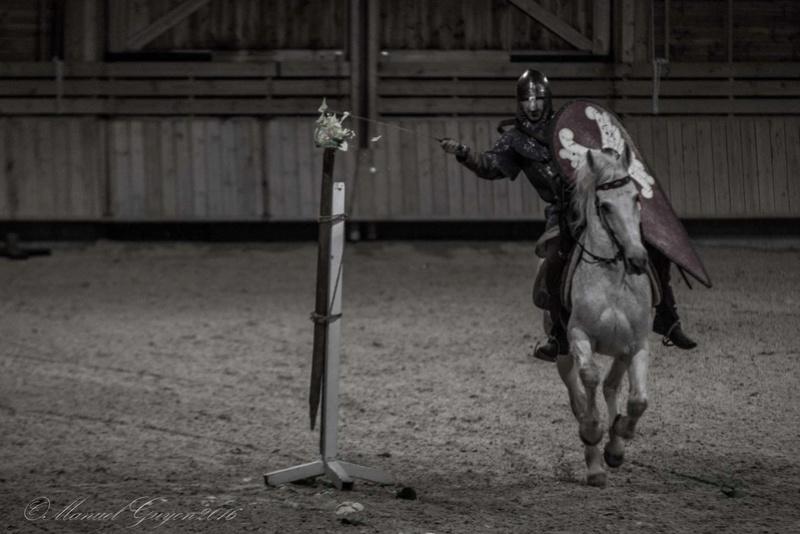 Deauville Mars 2016 Pole international du cheval 12885713