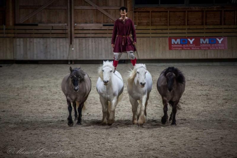 Deauville Mars 2016 Pole international du cheval 12885714