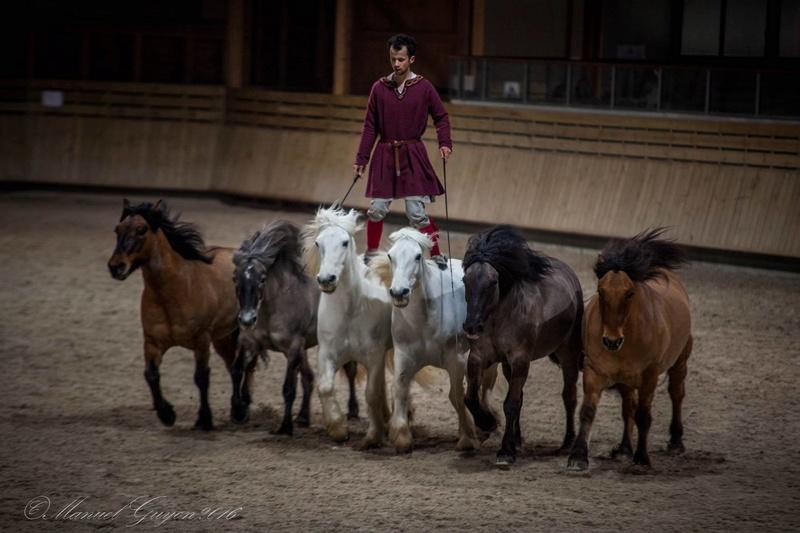 Deauville Mars 2016 Pole international du cheval 12888614