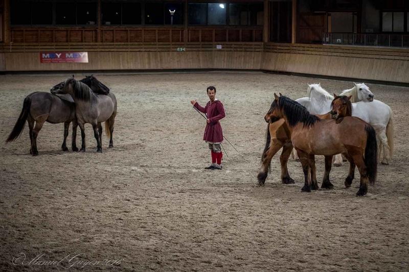 Deauville Mars 2016 Pole international du cheval 12900913