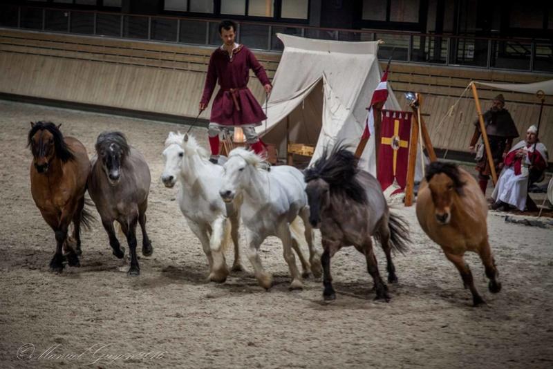 Deauville Mars 2016 Pole international du cheval 12901310