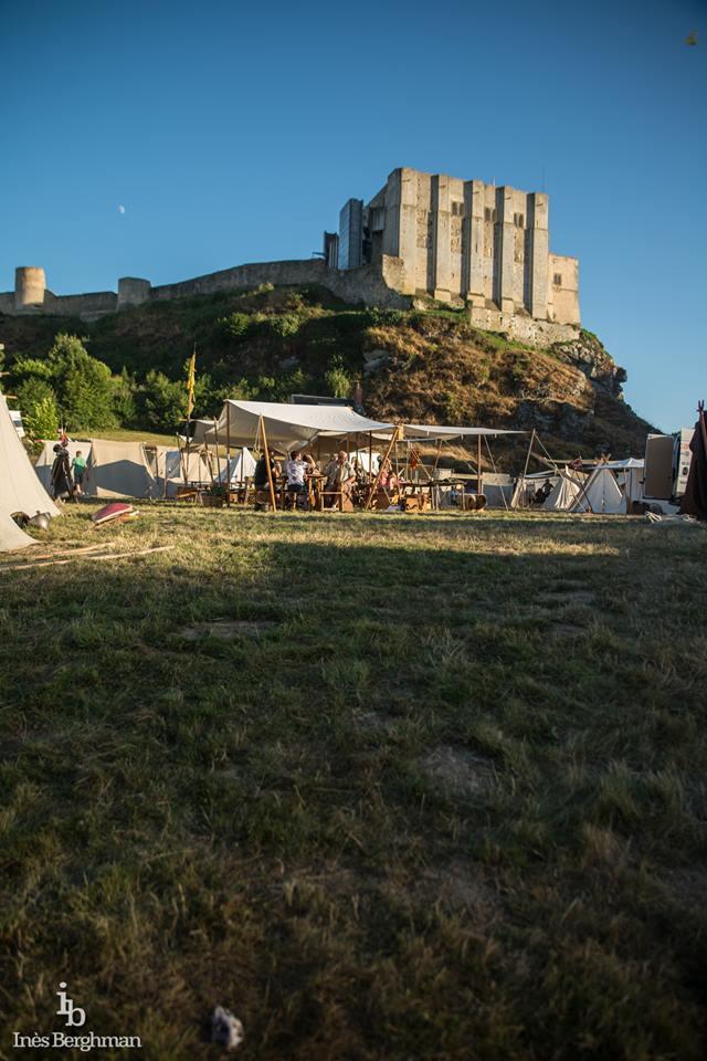 Chateau de Guillaume le Conquérant Falaise Août 2016 14039910