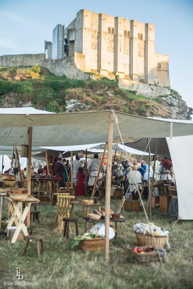 Chateau de Guillaume le Conquérant Falaise Août 2016 14064310