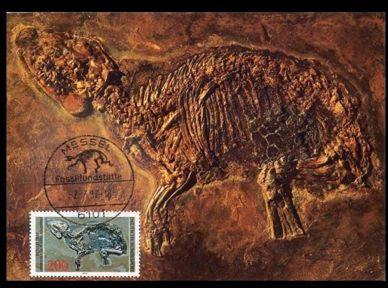 Paleophilatelie: Paläontologie und Philatelie  - Seite 2 German10