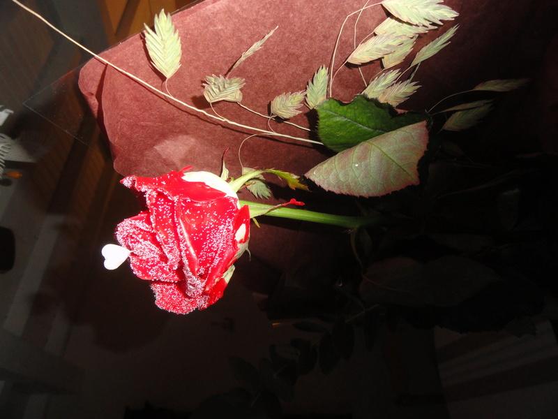 La Saint-Valentin approche ! Dsc08910