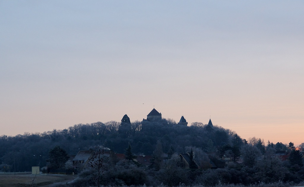 St Bernard au matin Stbern10