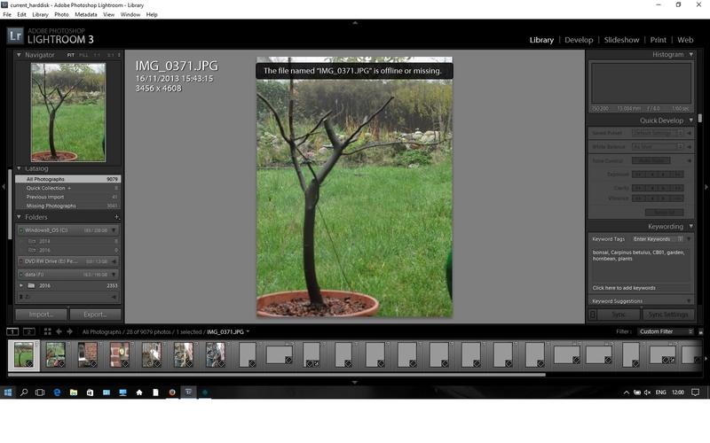 bonsai tracking  Lightr10