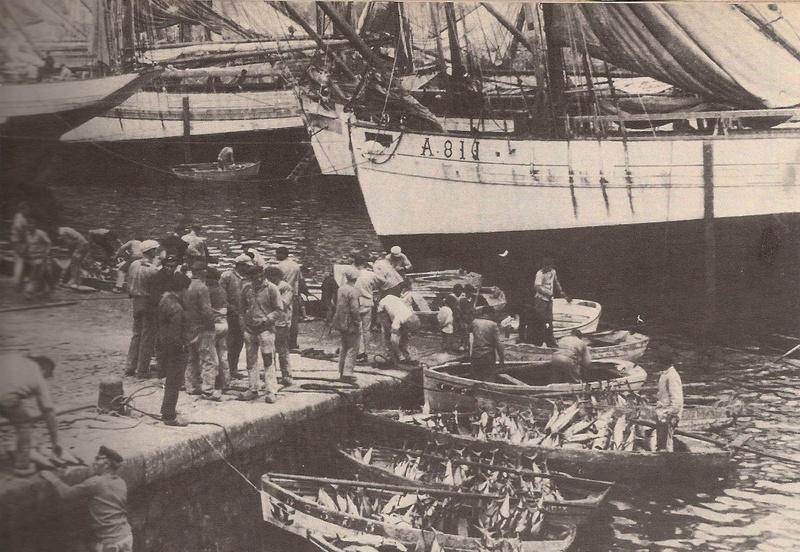 Thonier Marie-Jeanne (Billing Boats 1/50°) par jojo5 - Page 4 Precei11