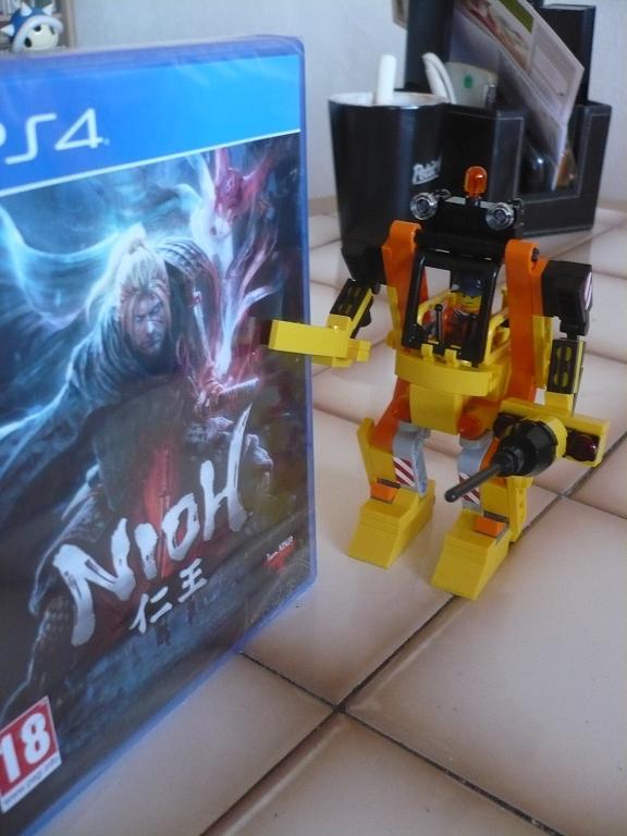 Nioh P1030314