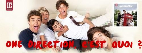 [Groupes, BoysBand] ♥ One Direction ♥  Tumblr10