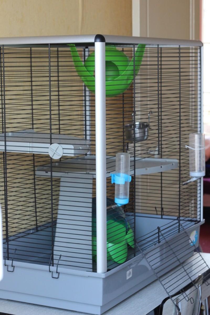 [A CLÔTURER, MERCI] ]Vend cage Jenny KD + accessoires PARIS et RP Img_5610