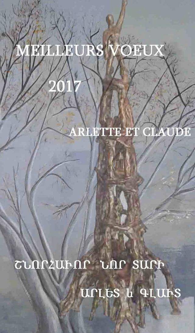 Bonne et heureuse année 2017 Voeux_10