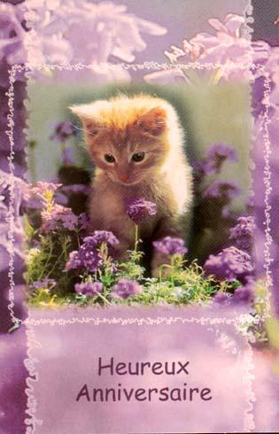 20 décembre 2012 Bon anniversaire Aurore - Page 2 9b2dw910