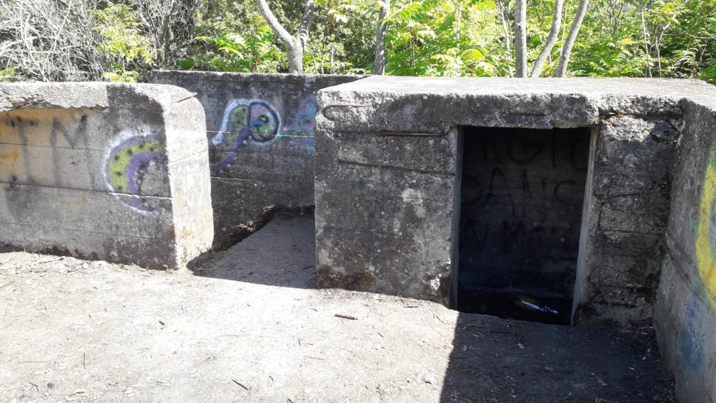 [ Histoires et histoire ] Fortifications et ouvrages du mur de l'Atlantique - Page 12 48710