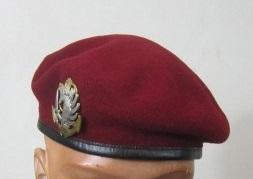 Du nouveau pour les anciens Marins (hors commandos) sur la tenue lors des cérémonies patriotiques - Page 3 Post-110