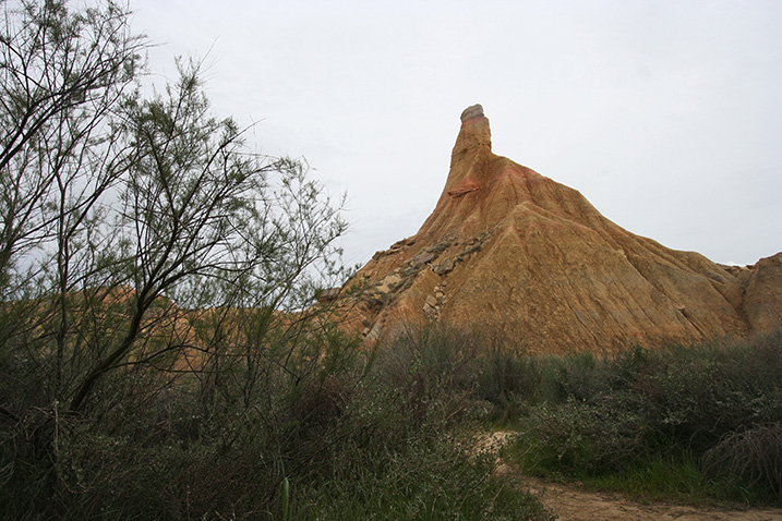 Le voyage dans le désert des Bardenas 15_bar10