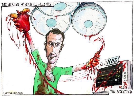 Political cartoons Hunt_k10