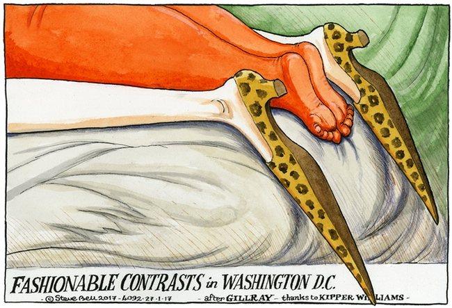 Political cartoons May_an13