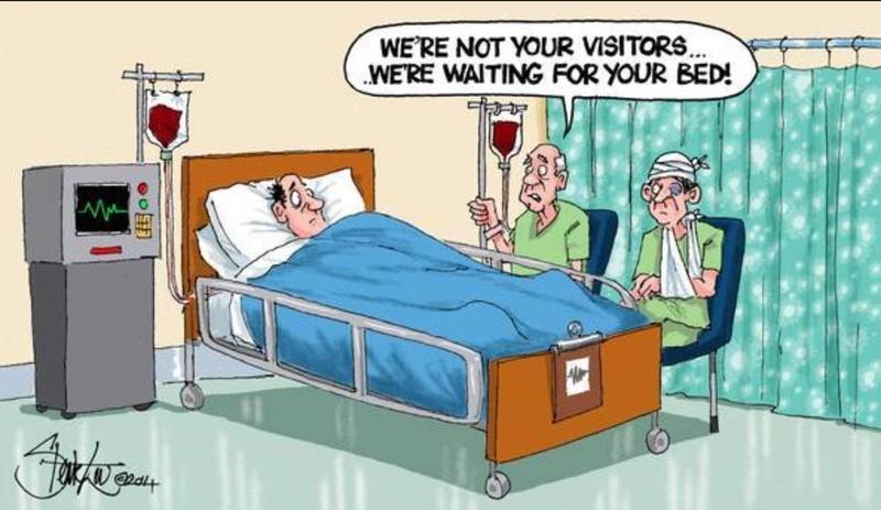 Political cartoons Nhs_cr11