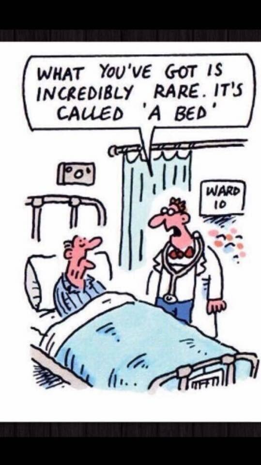 Political cartoons Nhs_in12