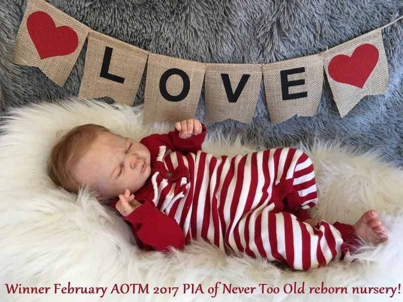 AOTM 2017 FEBRUARY WINNER - Pia of Never Toll Old Reborn Nursery!! Pia_wi11