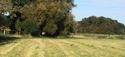Dpt 70 - Cidjy de la Fontaine - ONC Comtoise - Sauvée par elise-et-delice (Mars 2013) - Page 15 4e10