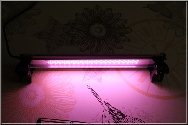 [Vente] Rampe LED LUMIVIE de 30cm Img_5413