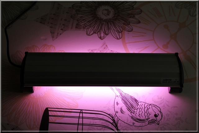 [Vente] Rampe LED LUMIVIE de 30cm Img_5414