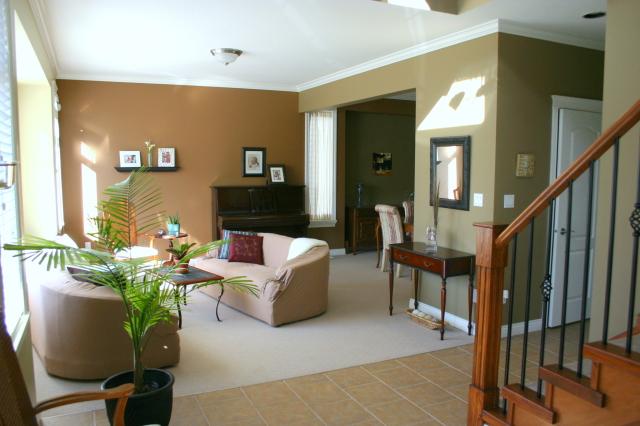 Quelles couleurs utiliser pour peindre salon et salle à manger? 09031111