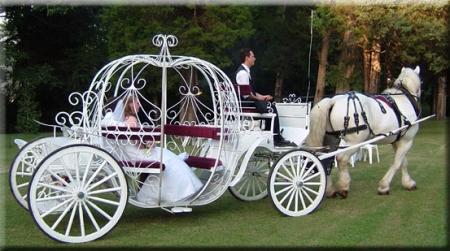 Matrimonio di Francogerardo e Misteria - Pagina 3 Carroz10