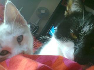 Nesta & Lubie Photo013