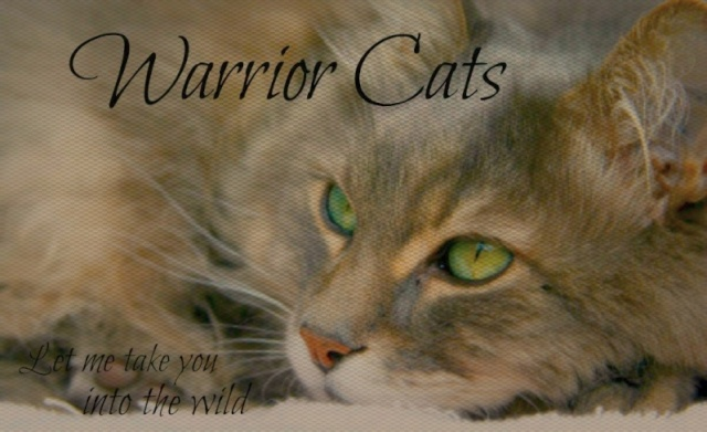 WarriorCats - Let me take you into the wild! Banner25