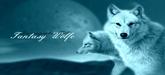 Street Cats Fantas10