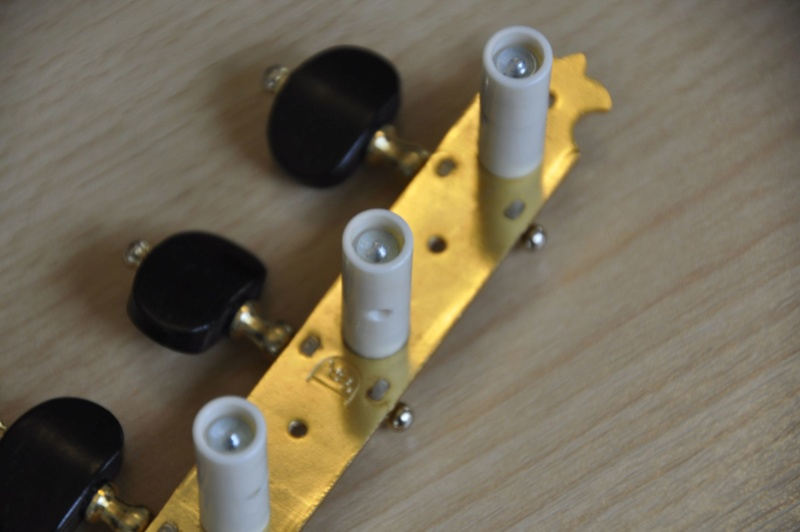 Le coin du luthier : les belles mécaniques _dsc0817