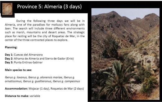 Visites malacologiques dans les montagnes Andalouses Pagina16