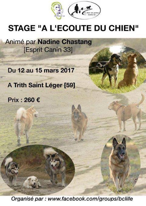 Stage avec Nadine Chastang - du 12 au 15 mars 2016 à Trith St Léger - COMPLET - Page 2 15590410