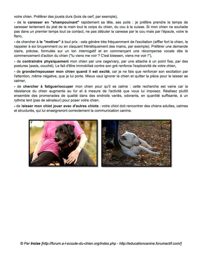 frustration - LES APPRENTISSAGES INDISPENSABLES du chiot et du chien adulte - Page 5 15726210