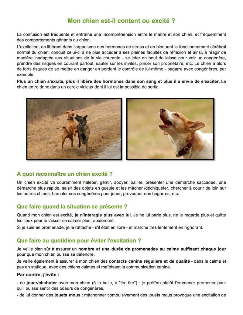 frustration - LES APPRENTISSAGES INDISPENSABLES du chiot et du chien adulte - Page 5 15776310
