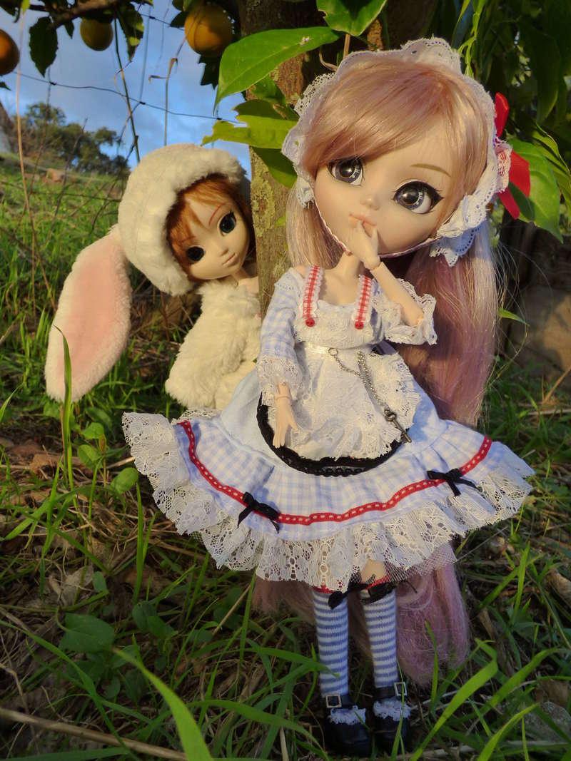 Alice au pays des oranges!!! P1030810