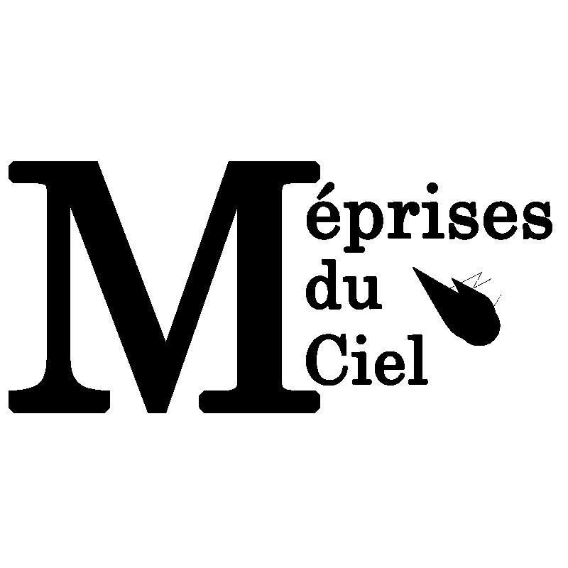Nouveau Site ! : meprises-du-ciel.fr Logome11