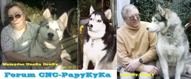 PapyKy remet en état, un S4 de 2004, Lien des tuto's en premiere page pour plus de facilité. - Page 3 Les_ch15