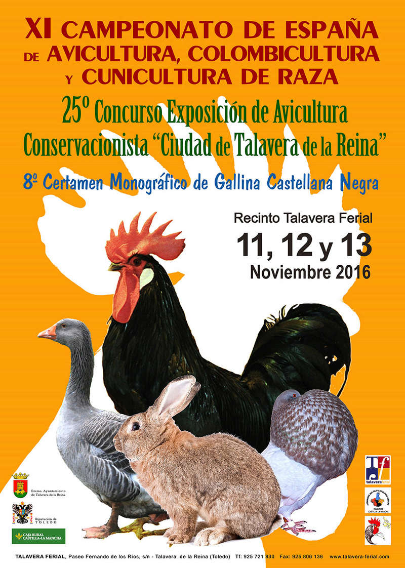 Exposición Avicultura 11, 12, 13 Noviembre en Talavera Cartel10