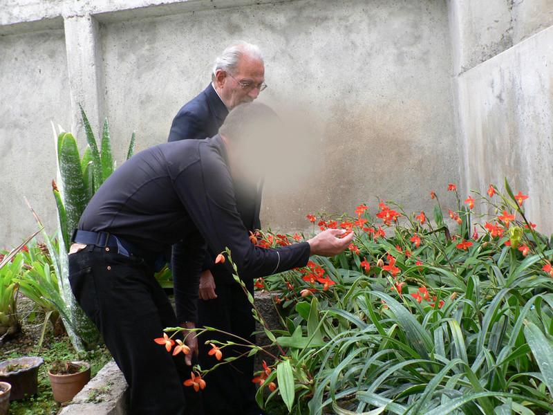 Discussion autour de Phragmipedium kovachii - Page 5 Photos14