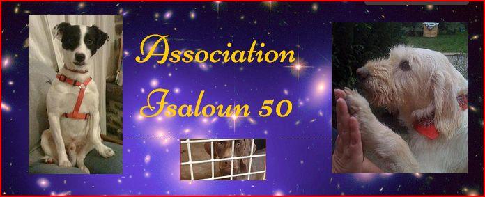 isaloun50