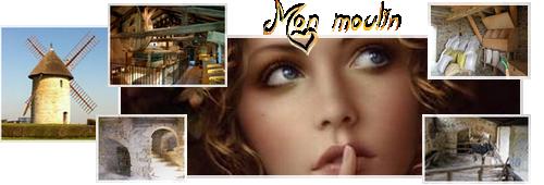 Fresque en veux-tu en voilà Moulin10