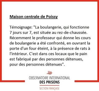 [Partenariat-OIP] Breves de prisons : la réalité. - Page 3 14522611
