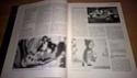L'actualité des sorties en librairie  - Page 3 410